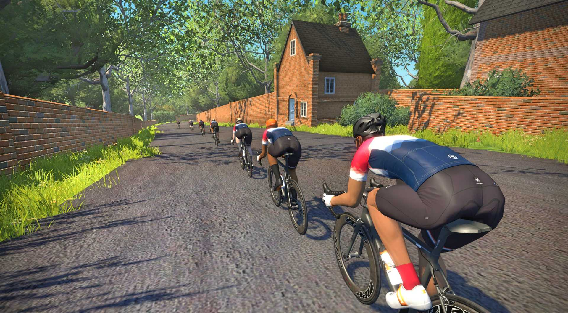 Our 5 Favorite Zwift Climbs | Complete Tri